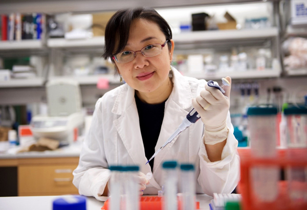 ADA-funded researcher Ling Yang, MD, PhD
